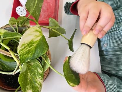 Un niño realiza una actividad con una planta en C.P. San Benito de Madrid. La pedagogía Montessori trabaja con elementos naturales