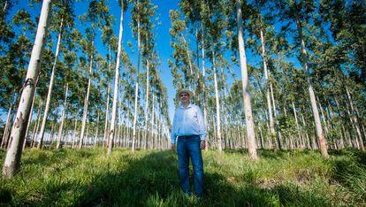 Juan Antonio Secchia recibió 600 hectáreas de tierra de su abuelo en Caazapá, un departamento ubicado en la región oriental de Paraguay.