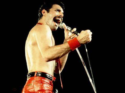 Freddie Mercury, cantante de Queen, en Chicago (Estados Unidos), en septiembre de 1980.