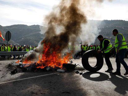 Olivareros de Granada y Jaén cortan la A-44, este jueves. En vídeo, los olivareros de Andújar protestan cortando la A-4.