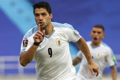 Luis Suárez celebra un gol con la selección uruguaya