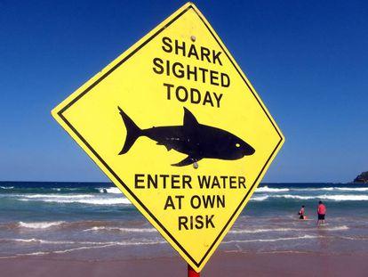 Un cartel advierte de la presencia de tiburones en la playa de Manly, en Sídney.