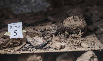 Imagen de una de las 17 momias halladas en el centro de Egipto.
