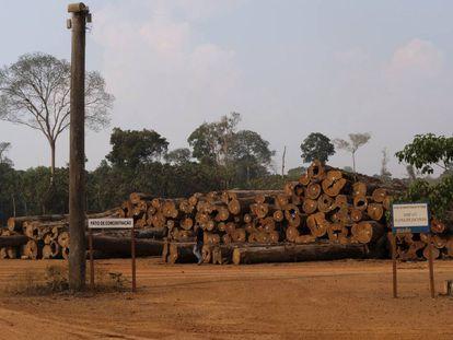 Una pila de troncos en una empresa maderera en el bosque nacional de Jacunda, en la Amazonia brasileña, a finales de agosto.