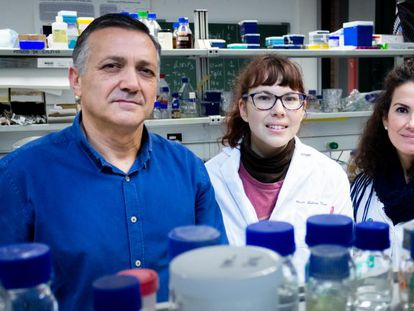 Carlos Santos Ocaña, con investigadoras de la Universidad Pablo de Olavide en los laboratorios de la institución.