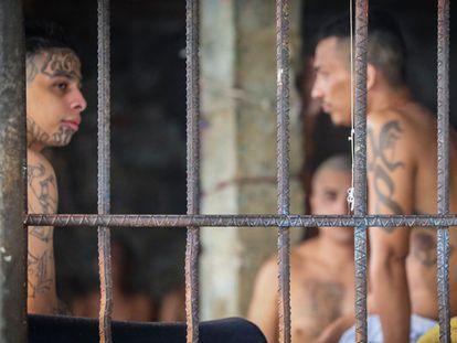 Varios pandilleros en la cárcel de Izalco, San Salvador, el 26 de abril de 2020.