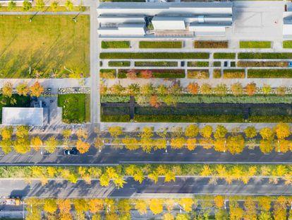 El parque Xuhui Runway de Shanghái ha convertido la última pista (operativa hasta 2011) del histórico aeropuerto de Longhua en un jardín lineal de casi dos kilómetros de longitud que invita a aislarse del frenético ritmo de la megalópolis china.