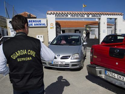 Un agente del Seprona de la Guardia Civil, ante la sede de una asociación protectora de  animales en Torremolinos (Málaga), en octibre pasado.