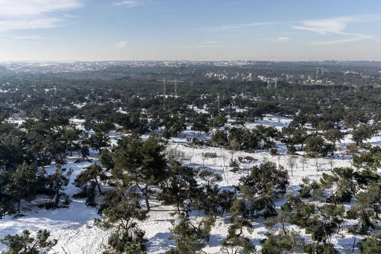 Vista de la Casa de Campo tras el temporal 'Filomena'.