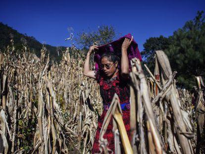 María Isabel Can, de 37 años, es miembro de la Comisión de Agua para controlar el consumo de los hogares gracias a un nuevo sistema de bombeo.