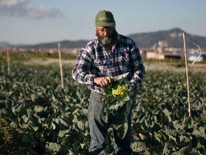 Albert Bou, agricultor.