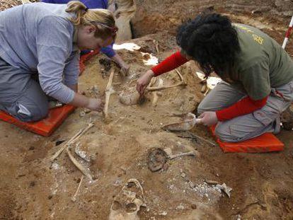 Arqueólogos en la exhumación de una fosa en Cazalla de la Sierra, en Sevilla.