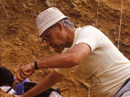 Emiliano Aguirre, durante una excavación en Atapuerca, en una imagen tomada por José María Bermúdez de Castro.