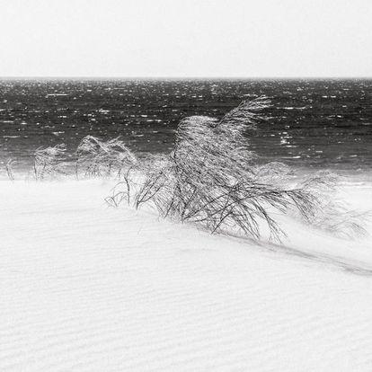 Murmullos de la gran duna móvil