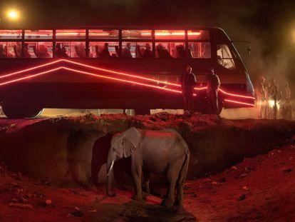 Ônibus station with elephant and rede ônibus ( Estação de ônibus com elefante e ônibus vermelho), 2018