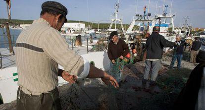 Pescadores preparan los aparejos de las embarcaciones, en Barbate.