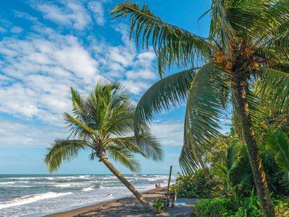 Playa de Tortuguero, donde fue asesinada la turista española