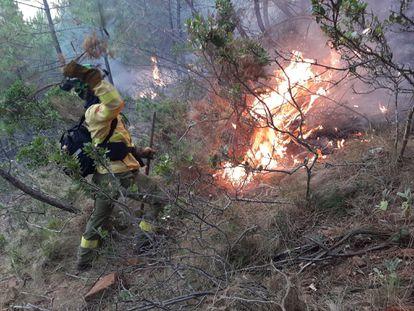 Un efectivo del Infoca trabaja en la extinción del incendio en Jubrique (Málaga).