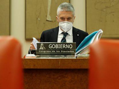 El ministro del Interior, Fernando Grande-Marlaska, el pasado 25 de marzo en una comparecencia en el Congreso de los Diputados.