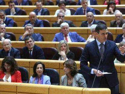 El presidente del Gobierno, Pedro Sánchez, durante su intervención en la sesión de control en el Senado.