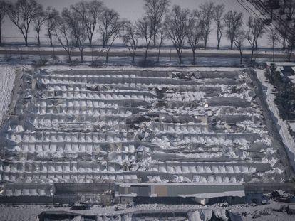 Invernadero destrozado por la nieve en Aranjuez, Madrid.
