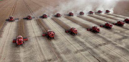 Trabajadores cosechan soja en una granja en la ciudad de Tangara da Serra en Cuiaba (Brasil).