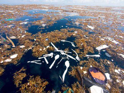 El mar de plástico en la costa de Honduras.