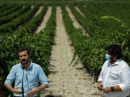 Pablo Casado, este lunes, durante una visita a unas bodegas de Jumilla (Murcia), junto al presidente autonómico, Fernando López Miras.