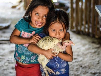 Unas niñas de la comunidad del Corredor Seco de Guatemala con una gallina peluca.
