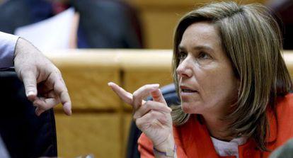 La ministra de Sanidad, Servicios Sociales e Igualdad, Ana Mato, en el Senado.