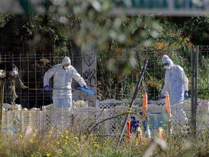 La autopsia confirma que los hermanos murieron tras ser golpeados en la cabeza
