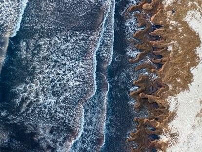 Algas 'Rugulopterix okamurae' en la playa de los Lances, en Tarifa, en una imagen de 2019 tomada con un dron.