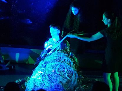 'Performance' en el Aquarium Finisterrae.