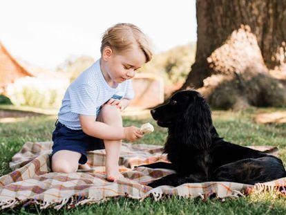 El príncipe Jorge con su mascota, el pasado julio en Norfolk (Reino Unido).