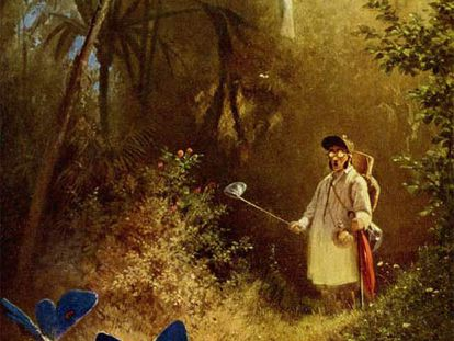 Cazador de  mariposas,  obra del  romántico alemán Carl Spitzweg.