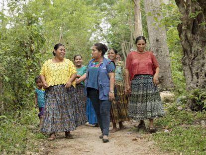 Un grupo de mujeres indígenas guatemaltecas del valle de Polochic recorre los campos en los que están haciendo crecer sus cultivos. Es un negocio apoyado por un programa de las Naciones Unidas para promover el desarrollo rural.