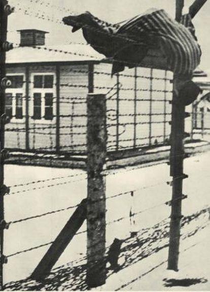 El cadáver de un prisionero de guerra ruso sobre el recinto electrificado de Mauthausen.