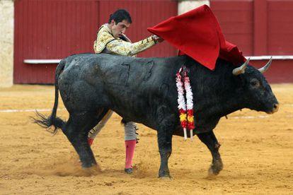El torero Javier Castaño durante su segundo toro en la corrida de toros de la Feria de Agosto, en la Plaza de Toros de La Malagueta.
