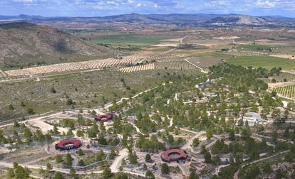 Panorámica de la zona de grandes felinos de APP Primadomus en Villena, Alicante.