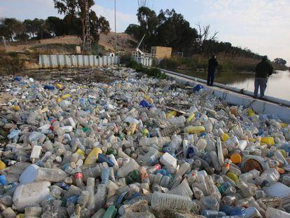 Cientos de recipientes de plástico se acumulan el el cauce viejo del Segura.