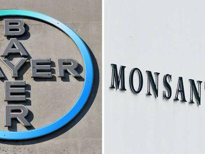 Imagen del logo de Bayer en Leverkusen (Alemania) y el de Monsanto cerca de Amberes (Bélgica).