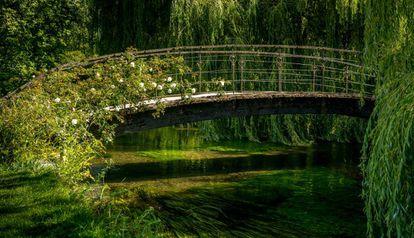 """Monet pintó este puente japonés al menos 15 veces para """"capturarlo bajo distintas luces""""."""