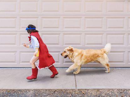 Un niño juega con su perro.