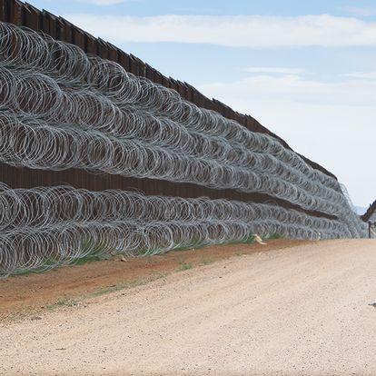 """Fotografía """"Correcaminos acercándose al muro fronterizo"""" tomada el 28 de abril de 2019 a unos pasos de la línea fronteriza entre Estados Unidos y México, en el condado de Naco, Arizona."""