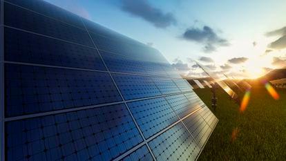 Novartis ha firmado acuerdos con seis proyectos renovables españoles para aportar más de 275 megavatios al sistema eléctrico europeo.