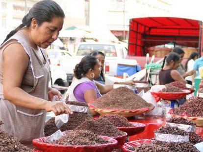 """Una vendedora de """"chapulines"""" en el mercado de Oaxaca, México."""