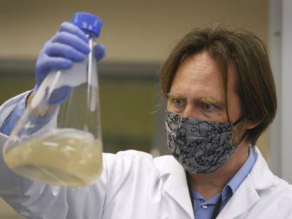 Un investigador de la compañía estadounidense Verndari, que trabaja en una vacuna para el coronavirus.