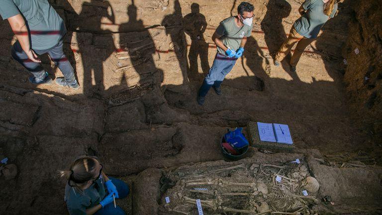 Personal técnico trabaja en la exhumación de la fosa común de Pico Reja, en Sevilla,  el pasado julio.
