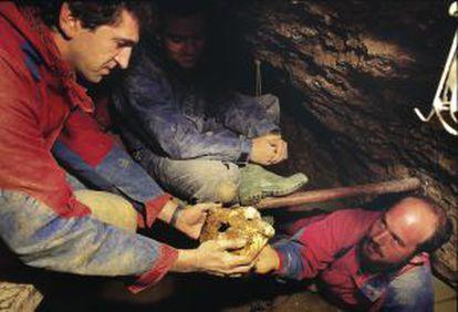 En julio de 1992, un equipo de paleontólogos españoles descubrió en la Sima de los Huesos en Atapuerca (Burgos) el cráneo mas completo del registro fósil mundial