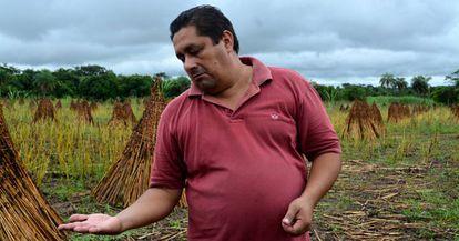 Un agricultor de comercio justo muestra su cosecha de sésamo en Arroyos y Esteros (Paraguay).